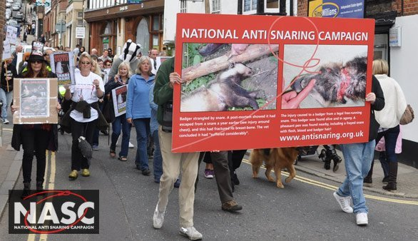 The anti-snaring demonstration march through the streets of Arundel