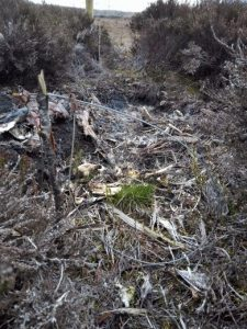 Shame of Wales: Snares in the Ruabon Mountains, April 2021