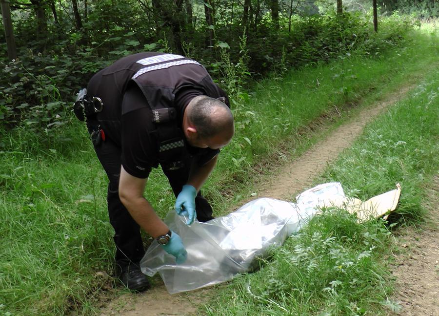 Badger snared and shot at Winslade, Hants