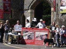 Snare demo at Arundel Castle