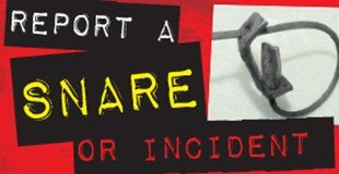Report a Snare Incident - Ban Snares