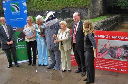 Badger Trust and National Anti Snaring Campaign